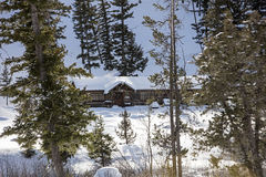 Winter log cabin snowy scene Royalty Free Stock Photography