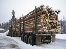 Winter logging load stock photo