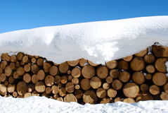Winter logs Royalty Free Stock Image