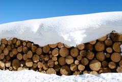 Winter logs Royalty Free Stock Image