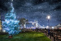 Christmas tree in front of the Tower Bridge in London Royalty Free Stock Photography