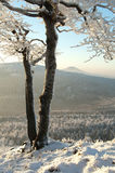 Winter lookout Royalty Free Stock Photos