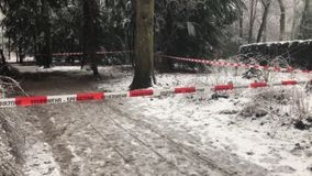 Winter with a lot of snowfallFire department barricade in front of a crime scene in the forest. Fire department barricade in front of a crime scene in the forest stock footage