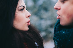 Winter Love Story Stock Images