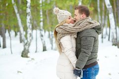 Winter lovers Stock Images