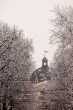 Winter in Lvov Royalty Free Stock Photography