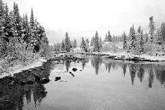 Winter-Märchenland Stockfotos