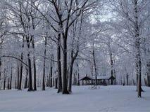 Winter-Märchenland bei Brigham County Park lizenzfreies stockbild