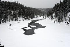 Winter Madison River Yellowstone Lizenzfreies Stockbild
