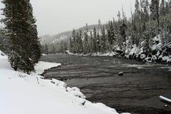 Winter Madison River Yellowstone Stock Image