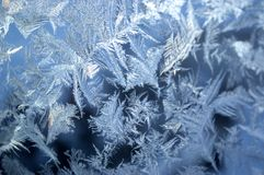 Winter magic and beauty frozen on the window. The revival of the winter fairy tale. Royalty Free Stock Images