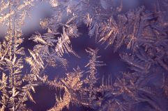 Winter magic and beauty frozen on the window. The revival of the winter fairy tale. Royalty Free Stock Photo