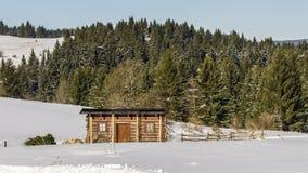Winter magic on Krahule Stock Photography