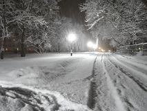 Winter is a magic time of year. Snowfall, night, lights. Peace and quiet. Winter is the coldest season. However it is a charming and beautiful time of year. It stock image