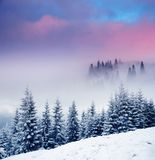 Winter. Majestic sunset in the winter mountains landscape. Dramatic sky royalty free stock photography