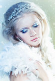 Winter makeup Stock Photography