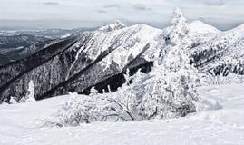 Winter in Mala Fatra mountains, Slovakia Stock Image