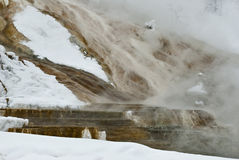 Winter, Mammoth Hot Springs, Yellowstone NP Stock Photos