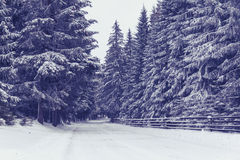 Winter. In Marisel, a mountain village near Cluj-Napoca, Romania Royalty Free Stock Images