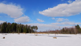 Winter marsh. Time lapse clip of winter swamp stock footage