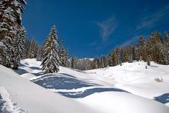 Winter Meadow. Snow drifts litter a winter wonderland Stock Photo