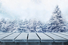 Winter  meadow. Winter fir trees and picnic table Stock Image