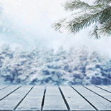 Winter  meadow. Winter fir trees and picnic table Royalty Free Stock Photography