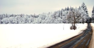 Winter meadow and forest. Winter forest and road with icing Royalty Free Stock Photography