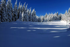 Winter meadow with forest around. Near Travny hill in Moravskoslezske Beskydy mountains Stock Images