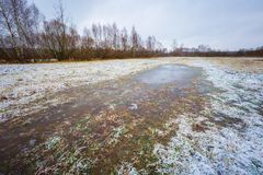 Winter meadow with frozen puddles Stock Photos