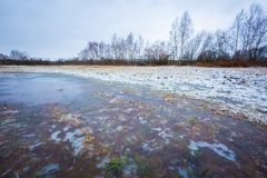 Winter meadow with frozen puddles Royalty Free Stock Images