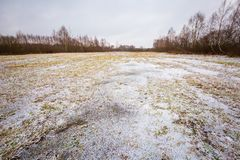 Winter meadow with frozen puddles Royalty Free Stock Photo