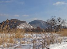 Winter meadow at a hill slope. Winter landscape with a meadow and the ridge Royalty Free Stock Photography