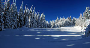 Winter meadow with shelter and  forest around. Near Travny hill in Moravskoslezske Beskydy mountains Royalty Free Stock Photography