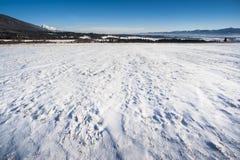Free Winter Meadows Stock Image - 25157851