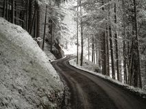 Winter Meandering Road. A beautiful road through the forest during the winter in Germany stock images