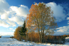 Winter meet autumn Stock Image