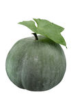 Winter Melon Stock Images