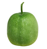 Winter Melon Stock Image