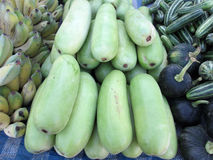 Winter melon Stock Photography