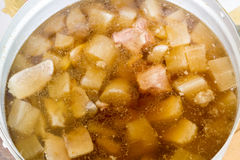 Winter melon soup with pork Royalty Free Stock Photography