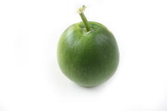 Winter melon on white background Royalty Free Stock Images