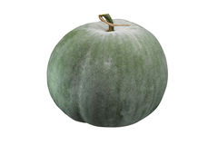 Winter-Melone Stockbild