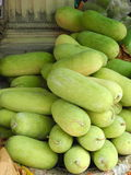 Winter Melons. On a street market in Bangkok Royalty Free Stock Photo