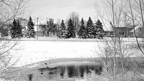 Winter in Minnesota,USA Royalty Free Stock Image
