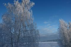 The winter`s tale ,a miracle of Russia. Winter miracle, delightfully, in Russia came frosts, whiter than white, Nizhny Novgorod region, snow fairy tale stock images