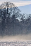 Winter with mist. The morning sun is coming out while still the mist is covering the winterly landscape Stock Images
