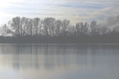 Winter Mist Landscape Stock Photography