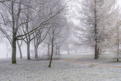 Winter mist Royalty Free Stock Images