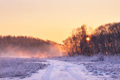 Winter misty colorful sunrise. Rural foggy and frosty scene. Royalty Free Stock Photography